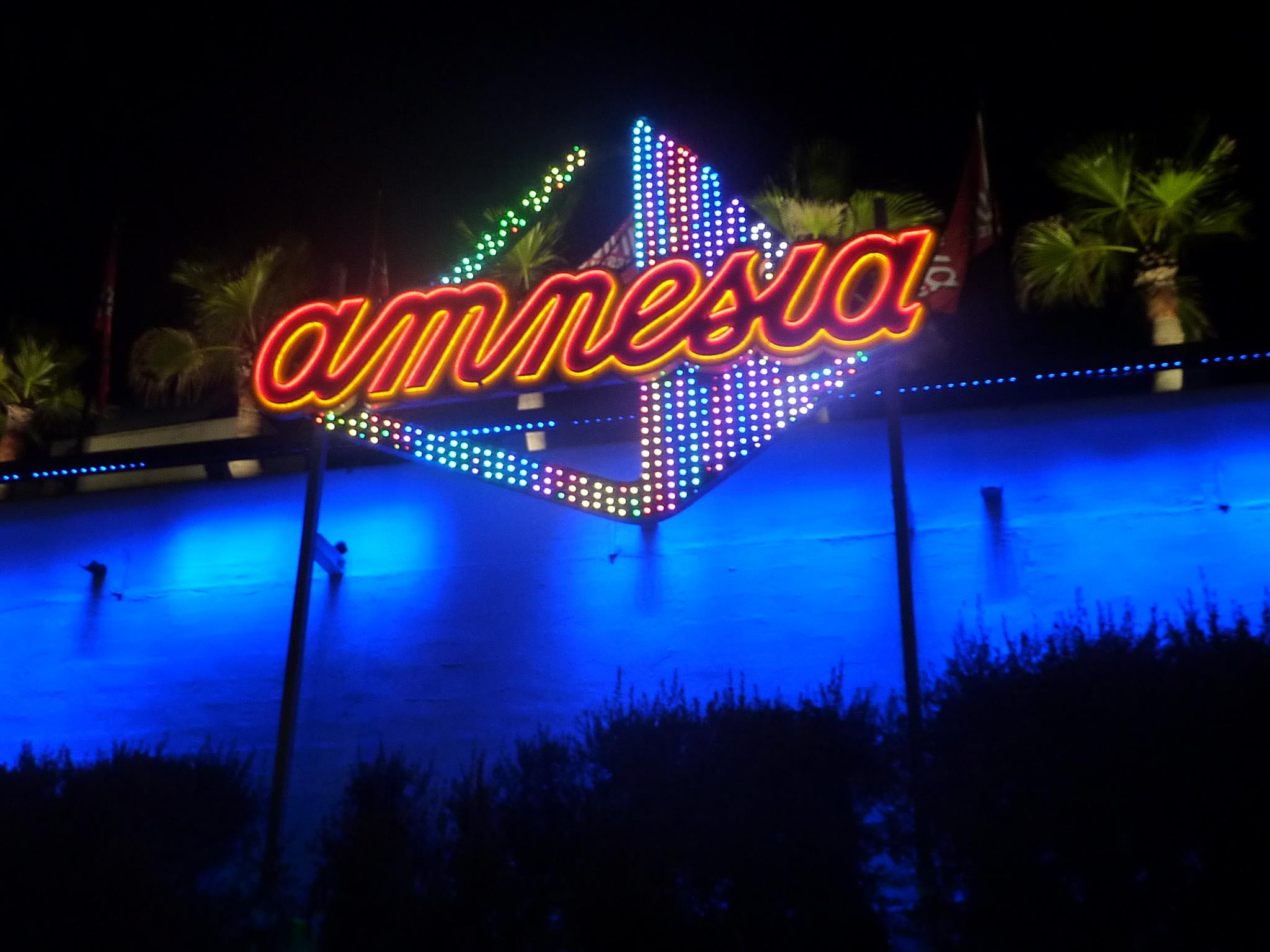 Amnesia: elrow | The Enchanted Fowrest