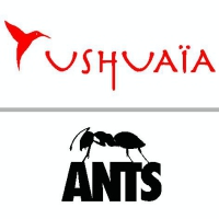 Ushuaïa: ANTS