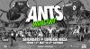 ANTS - Ushuaïa 2020